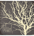 dry tree silhouette vector image
