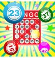 bingo9 vector image