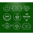 collection of Irish hand drawn logo templates vector image