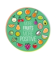 Circle composition of fruits and berries vector image