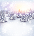 Winter Landscape Background with Christmas Trees vector image
