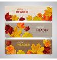autumn headers vector image