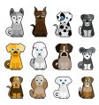cute dogs vector image
