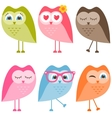 set of owls and owlets isolated on white vector image vector image