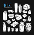 dairy products collection 1 vector image
