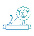 wild and big lion vector image