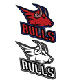 Bull mascot for sport teams vector image