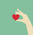 Flat Hand Holding Red Heart vector image