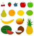 14 Fresh Fruit Icons vector image
