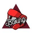Color vintage Boxing emblem vector image