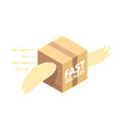 fast delivery service flat parcel with wings vector image