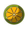 lemon slice citrus vector image