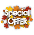 Special offer background with maple leaves vector image