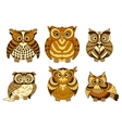 Cute brown cartoon owls birds vector image