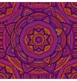 Colorful Ethnic Pattern vector image vector image