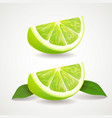 slices of lime isolated icon realistic vector image