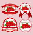 the theme cranberry vector image