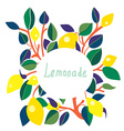 Lemonade label - bright design vector image