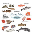 colored sketch seafood set vector image