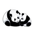 Pandas vector image vector image