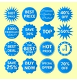 Blue seals-stickers set vector image