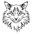 contour cat vector image