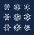 flakes vector image