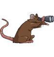 rat looking through binoculars vector image vector image