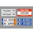 License car number plates set USA vector image