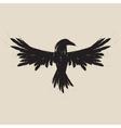 Black raven vector image