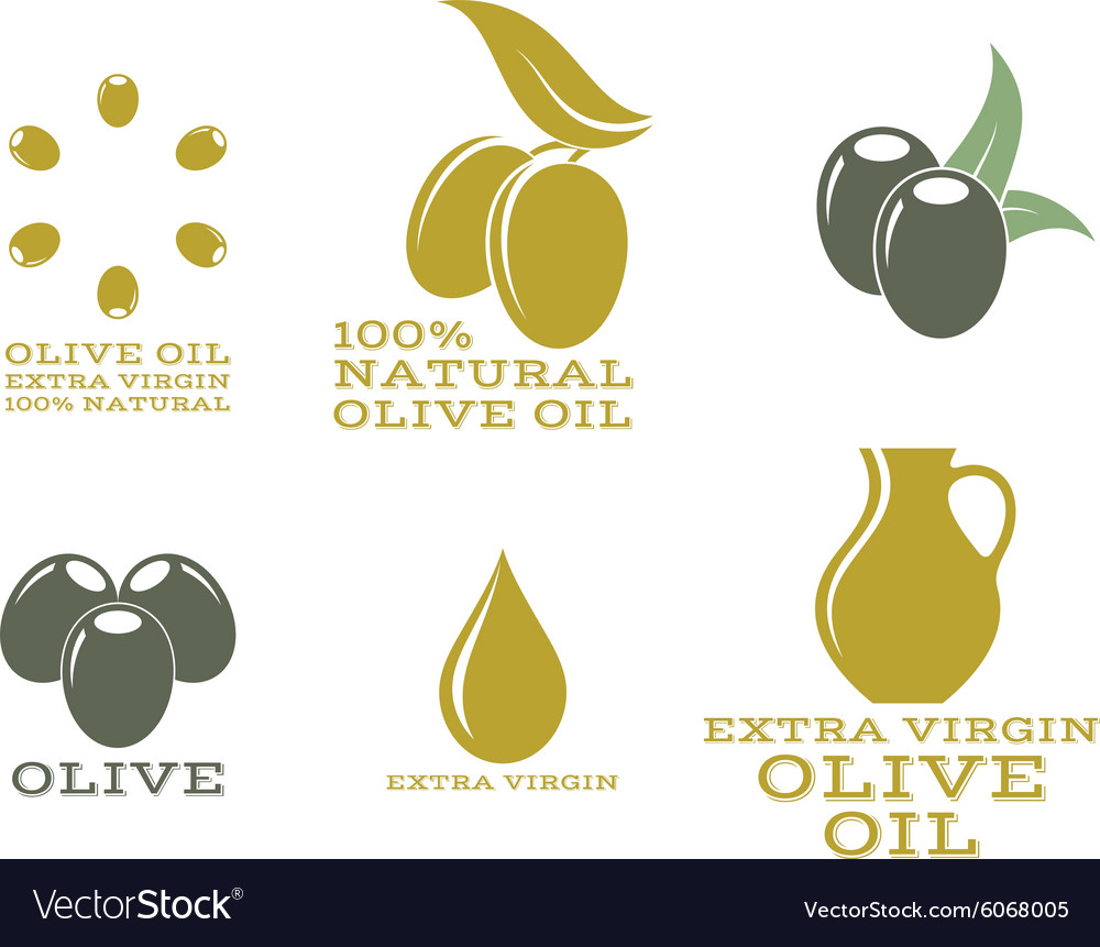 Olive oil isolated labels and icons vector