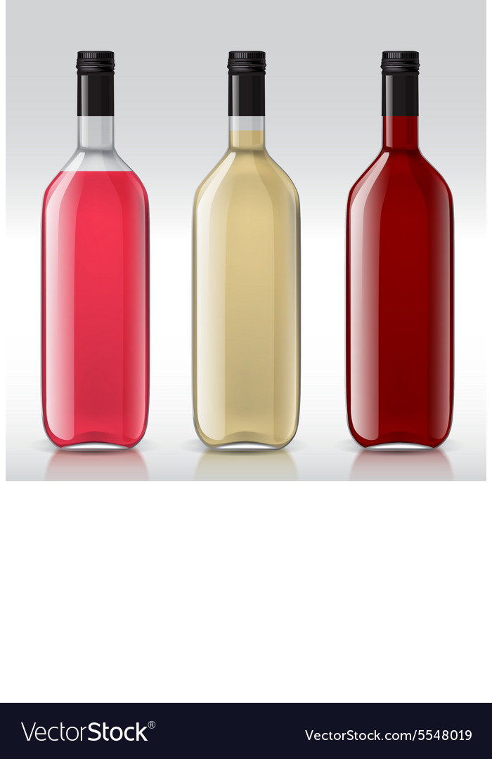 Set of transparent bottles for different wines vector