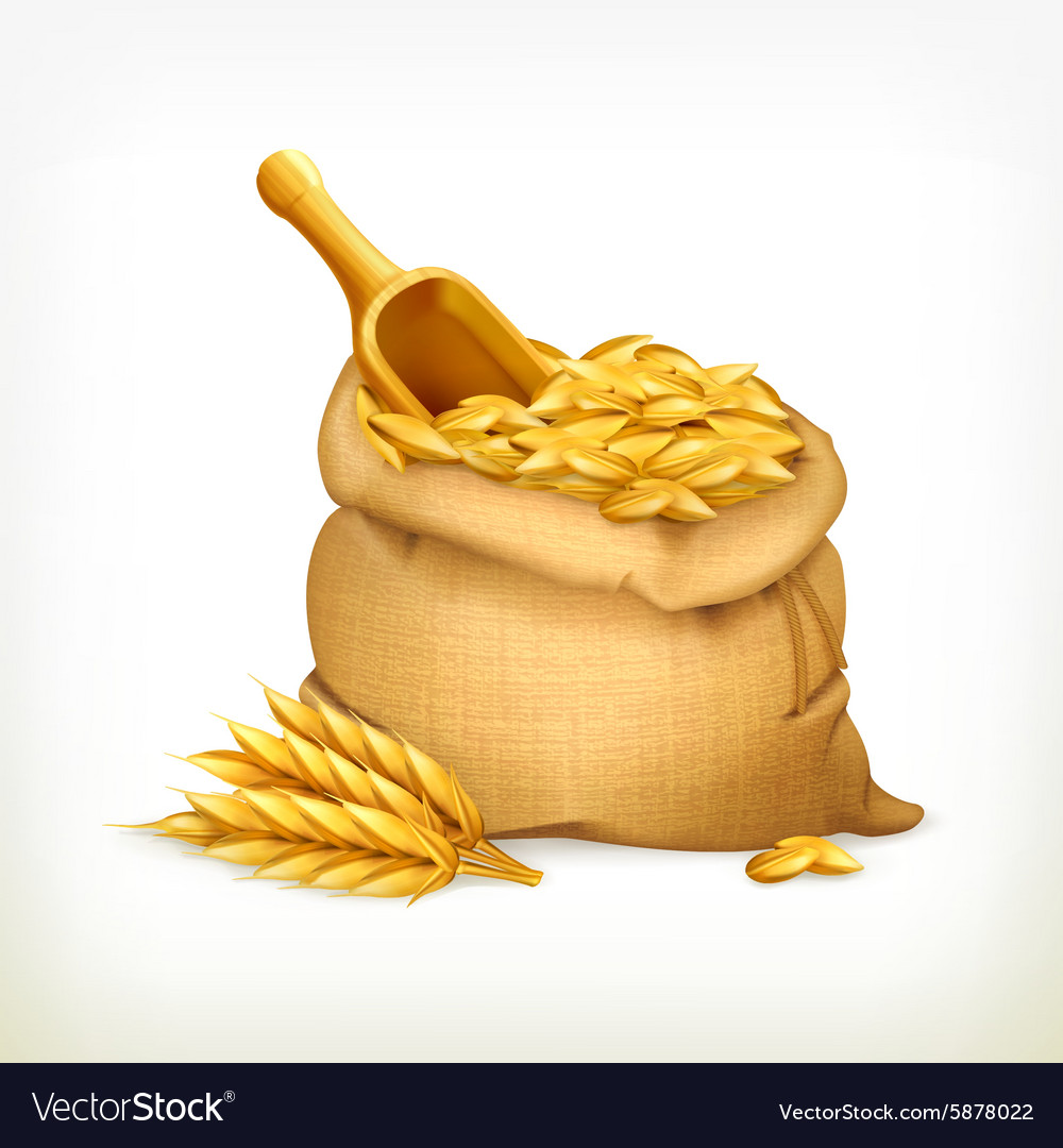 Ears and wheat bag isolated vector