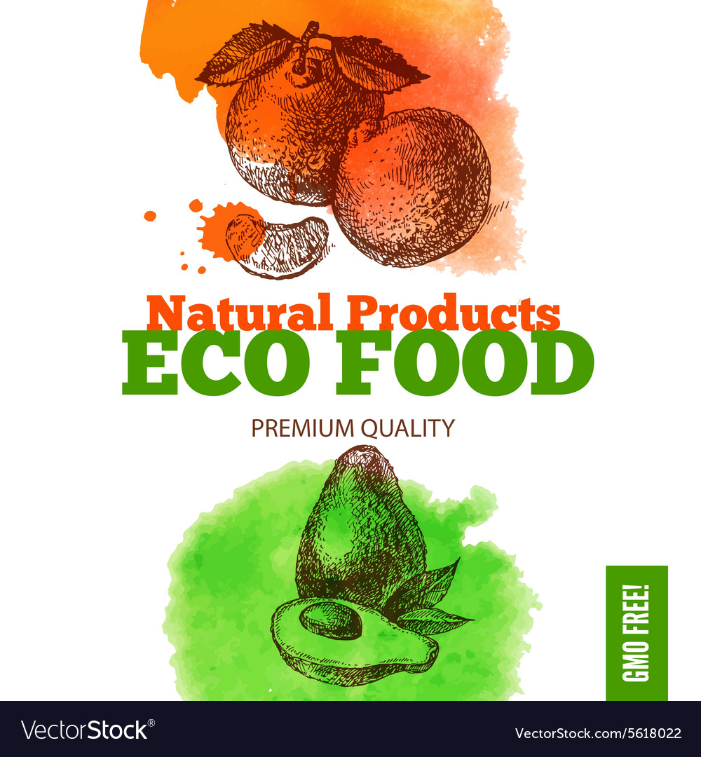 Eco food menu background watercolor and hand vector
