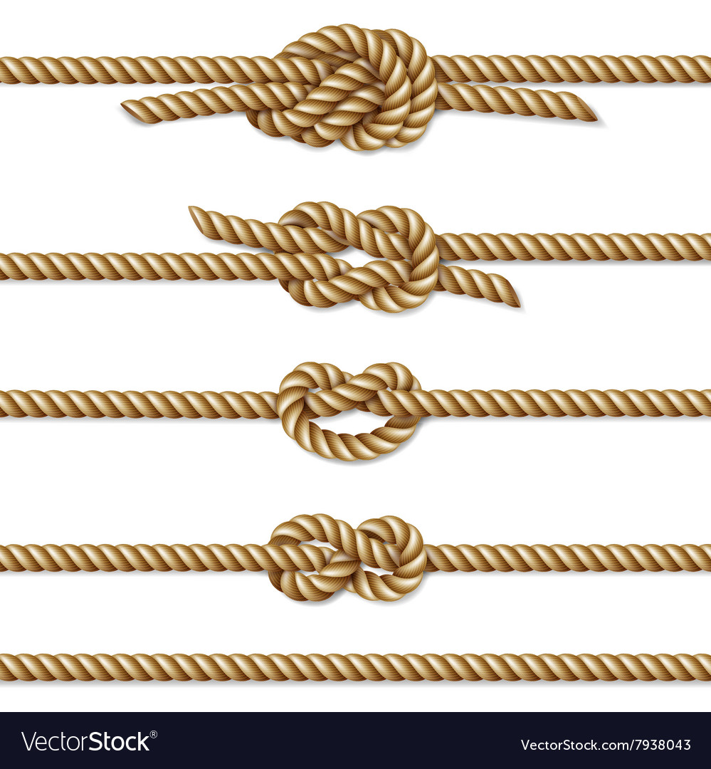 Yellow twisted rope border set vector