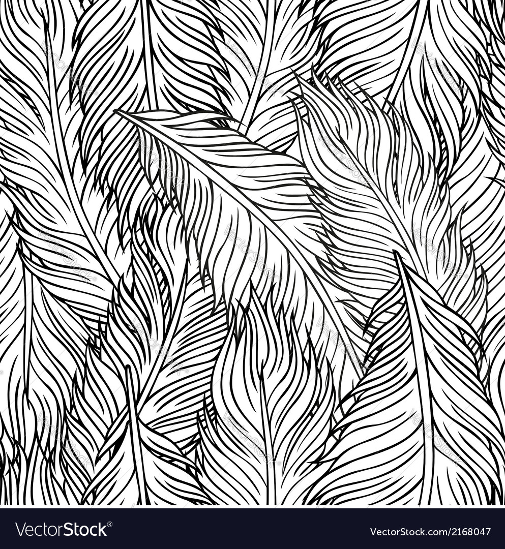 Handdrawn feathers vector