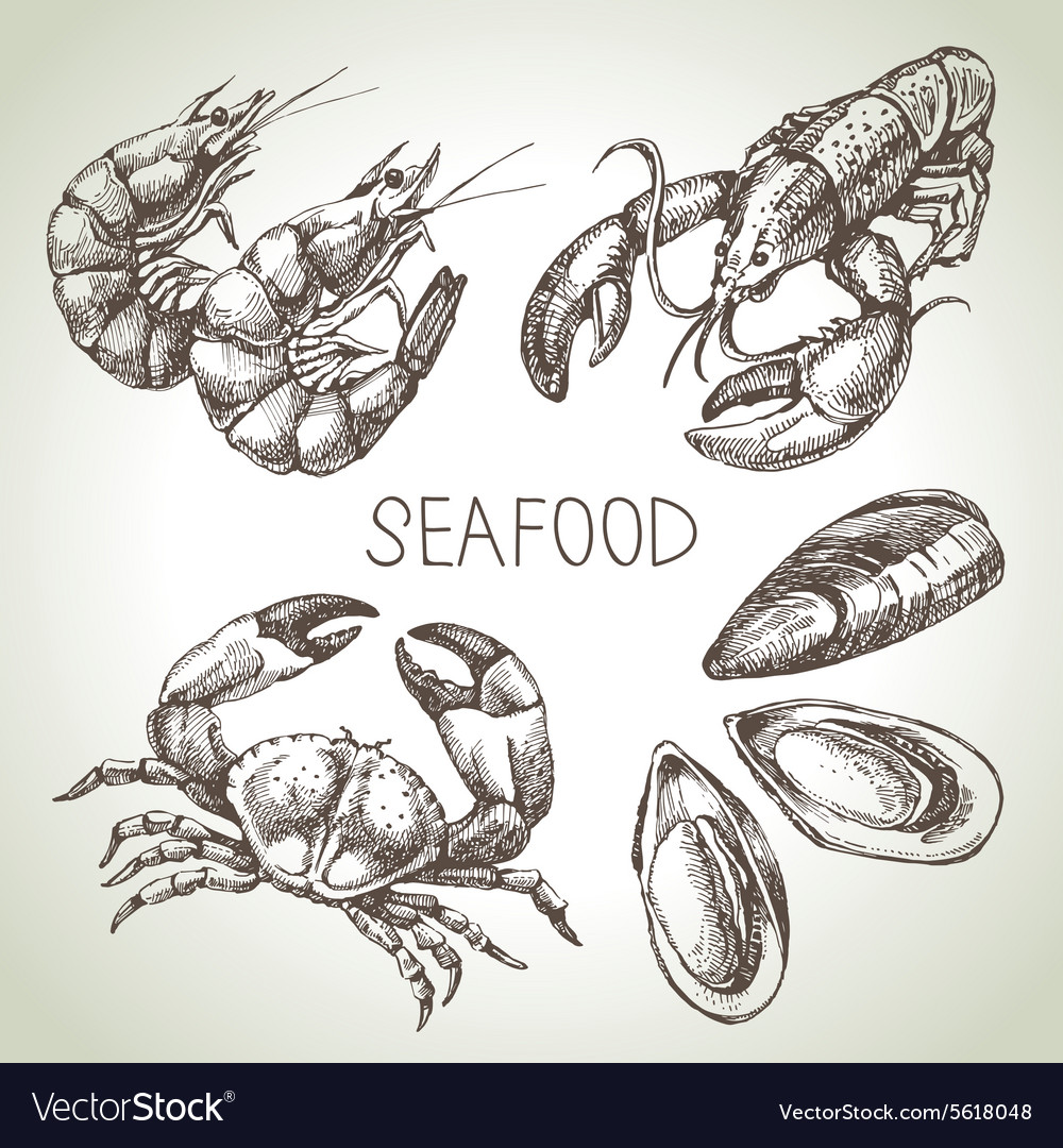 Hand drawn sketch set of seafood vector