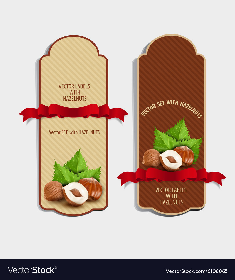 Set of vertical labels with hazelnuts vector