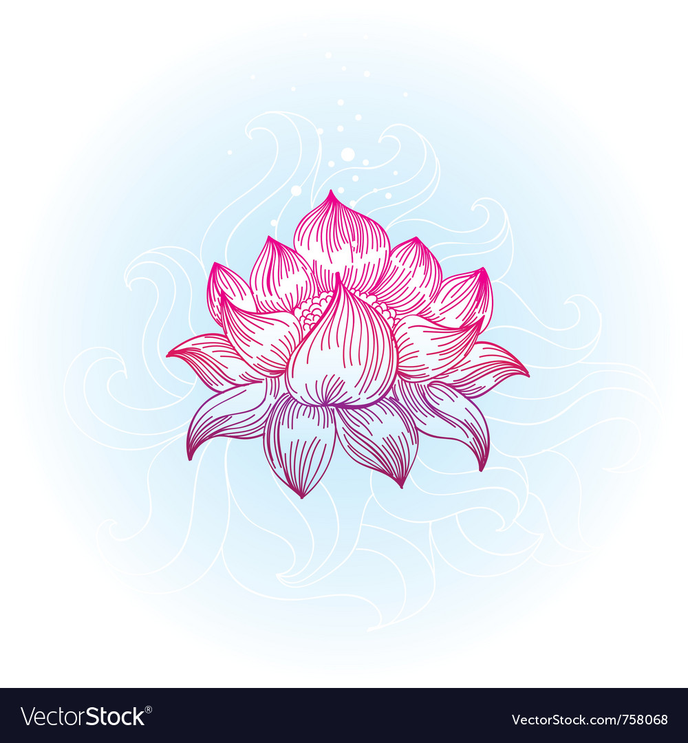 Lotus in handdrawn style  vector