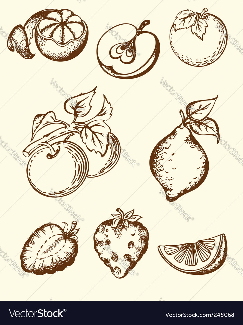 Vintage fruit icons vector