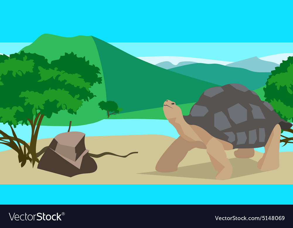 Tortoise near the river seamless animal and vector