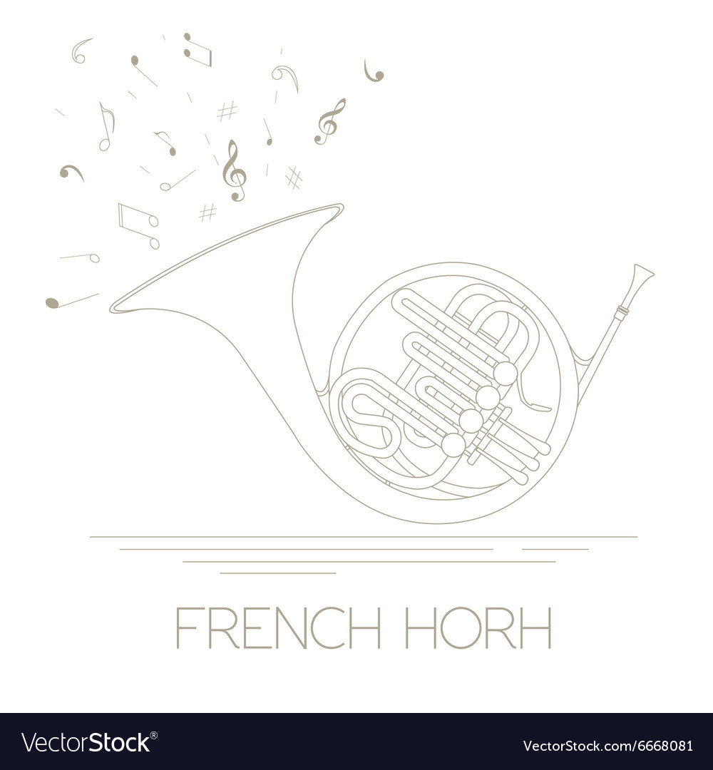 Musical instruments graphic template french horn vector