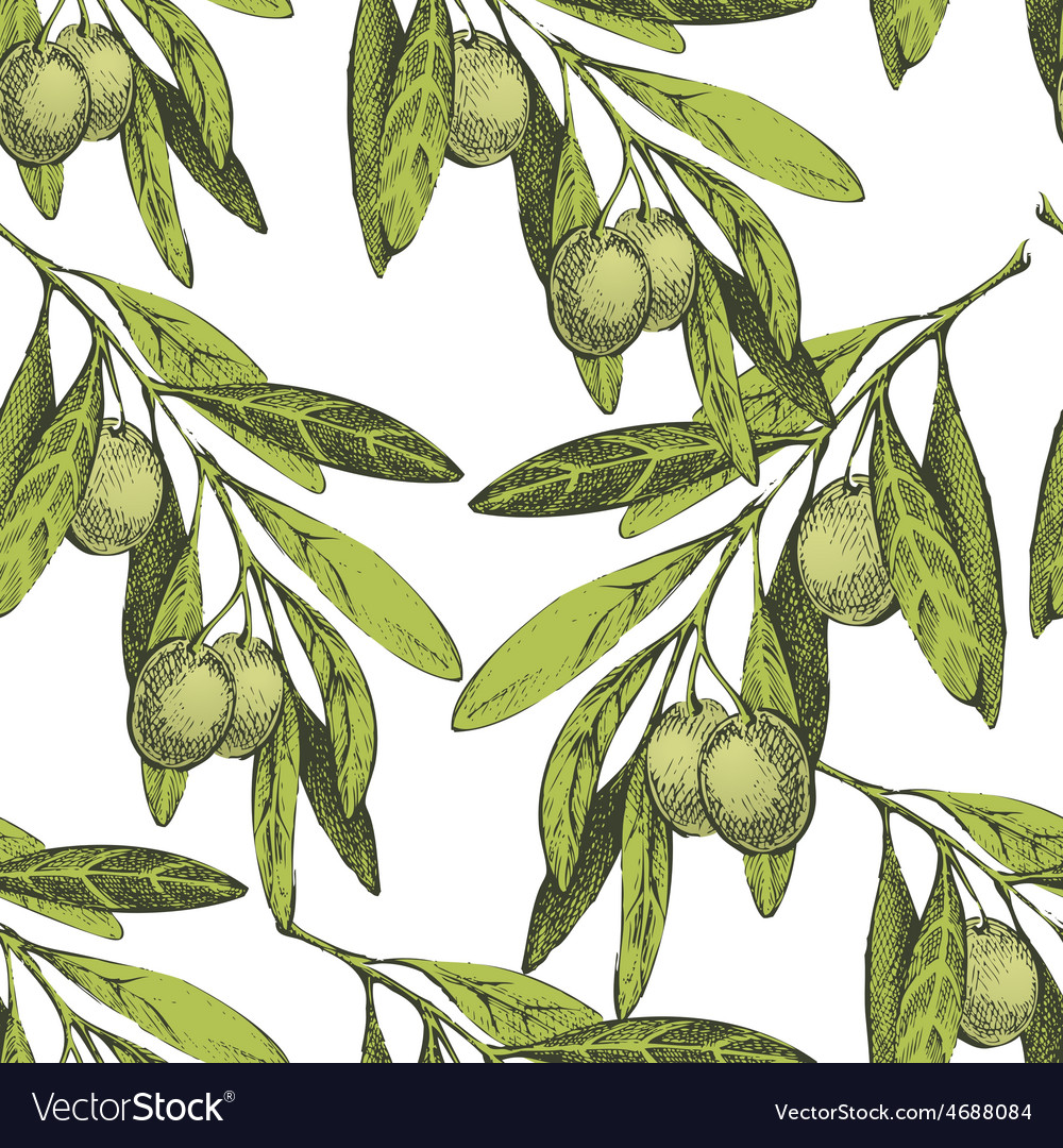 Seamless pattern with hand drawn olives vector