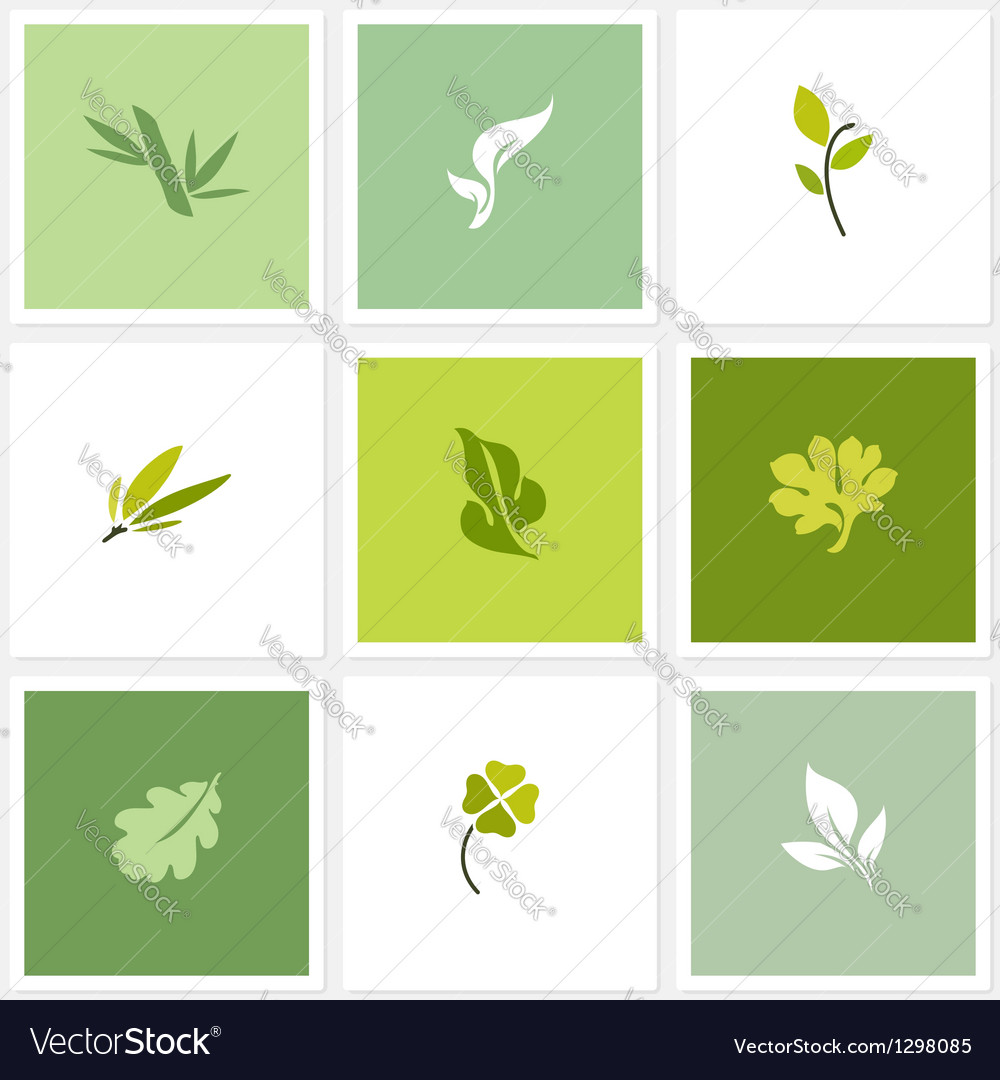 Leaf  set of posters design elements vector
