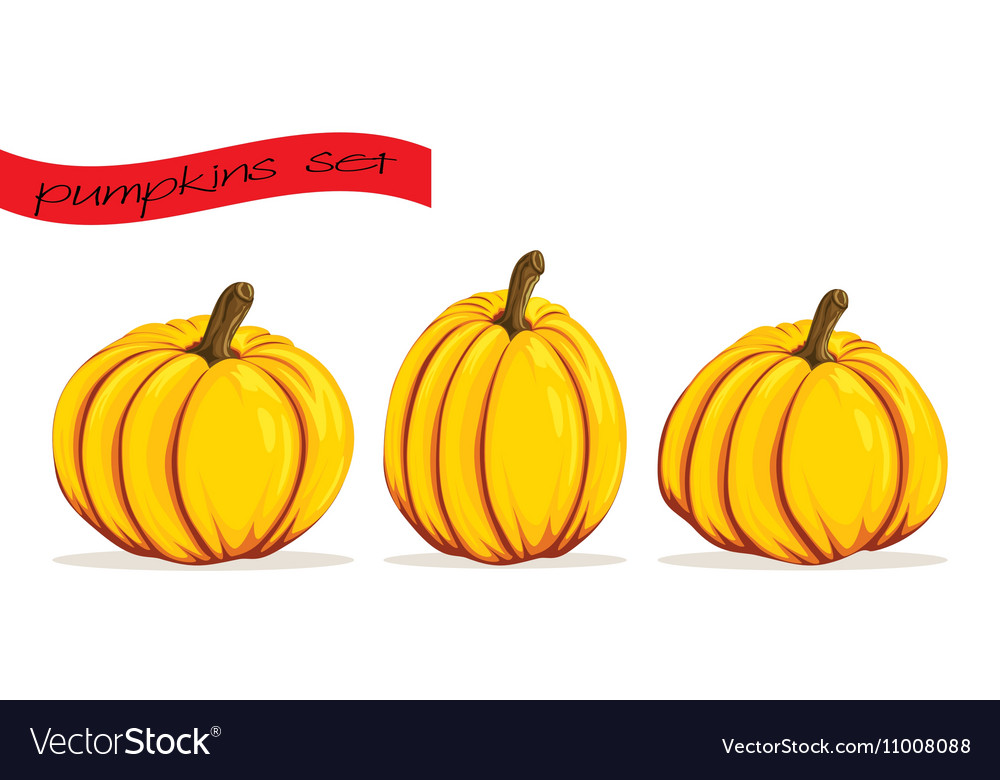 Pumpkins icons set in cartoon style three objects vector