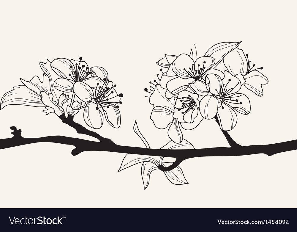 Decorative cherry blossom vector