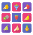 flat style various fruits icons vector image