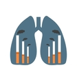 Lungs with smoking factories vector image