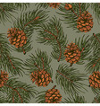Spruce seamless pattern vector image