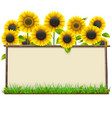 Wooden frame with sunflowers vector image